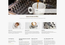 <h4>Website espresso-facts.ch</h4>