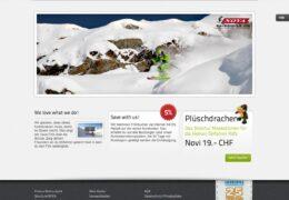 <h4>Website skischule.ch</h4>